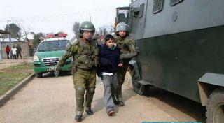 Presentan Recurso De Protección En Favor De Dos Niños Mapuches