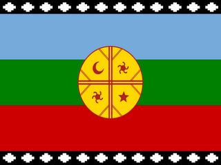 Gobernación De Malleco Es Ocupada Por Mapuches Que Exigen Devolución De Kultrún