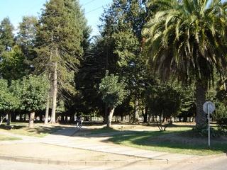 Remodelaran Plaza Blas Reyes De Loncoche