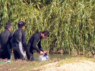 Niña De 2 Años Falleció Al Caer a Un Canal En Ruta Freire-Radal