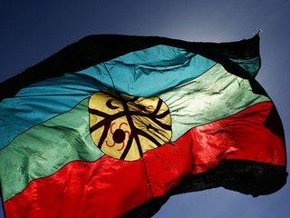 Comunidades Mapuches De Freire Presentarán Recurso De Protección Contra Instalación De Líneas Eléctricas En Su Territorio