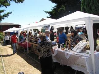 Mañana Comienza La Quinta Feria Costumbrista De Nueva Toltén