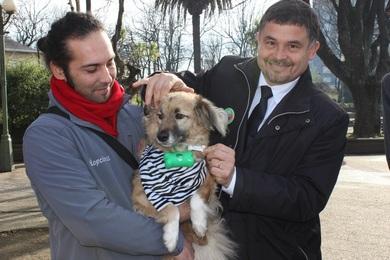 En Lautaro Se Comprometen Con Tenencia Responsable De Animales De Compañía