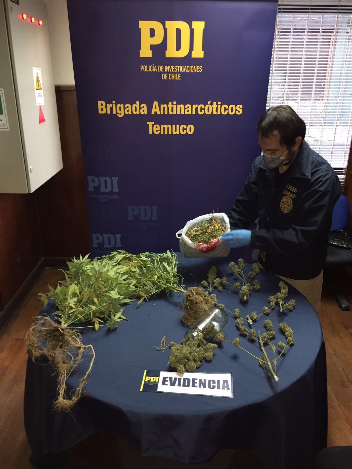 PDI Incauta Marihuana Desde Un Domicilio Particular