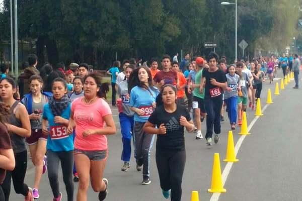 Gran Corrida Escolar Reunió A Más De Mil Atletas