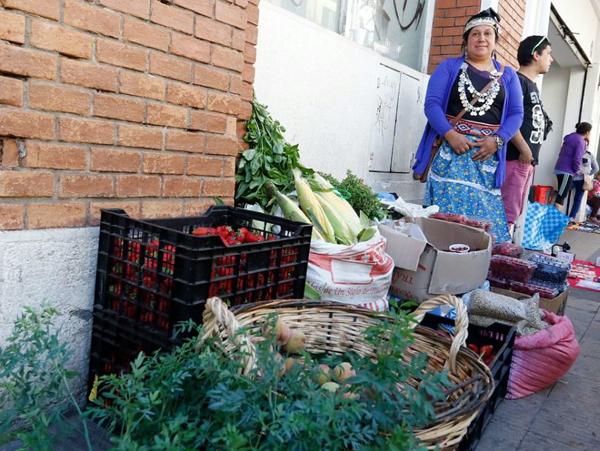 Core Daniel Sandoval respalda a hortaliceras mapuches del centro de Temuco