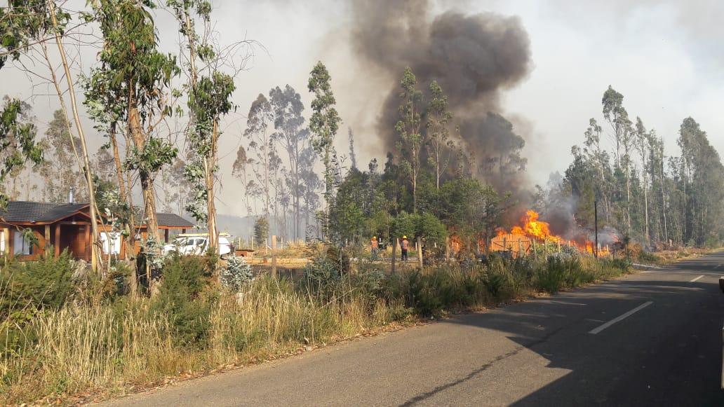 ONEMI Cancela Alerta Roja Para La Comuna De Pitrufquén Por Incendio Forestal
