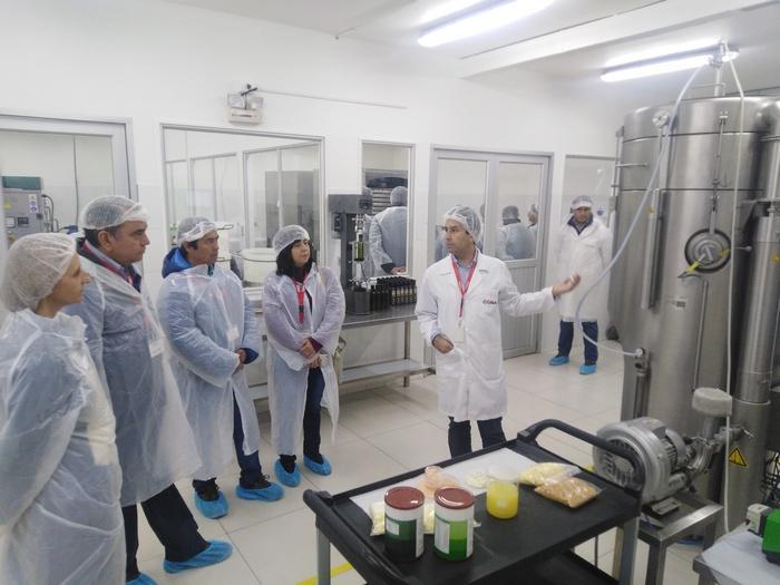 Empresa Chilena Creó Bebida Vegetal, Sin Leche Y Gluten, En Base A Lupino
